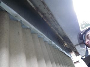 三重県いなべ市 イタチの侵入防止 広範囲被害